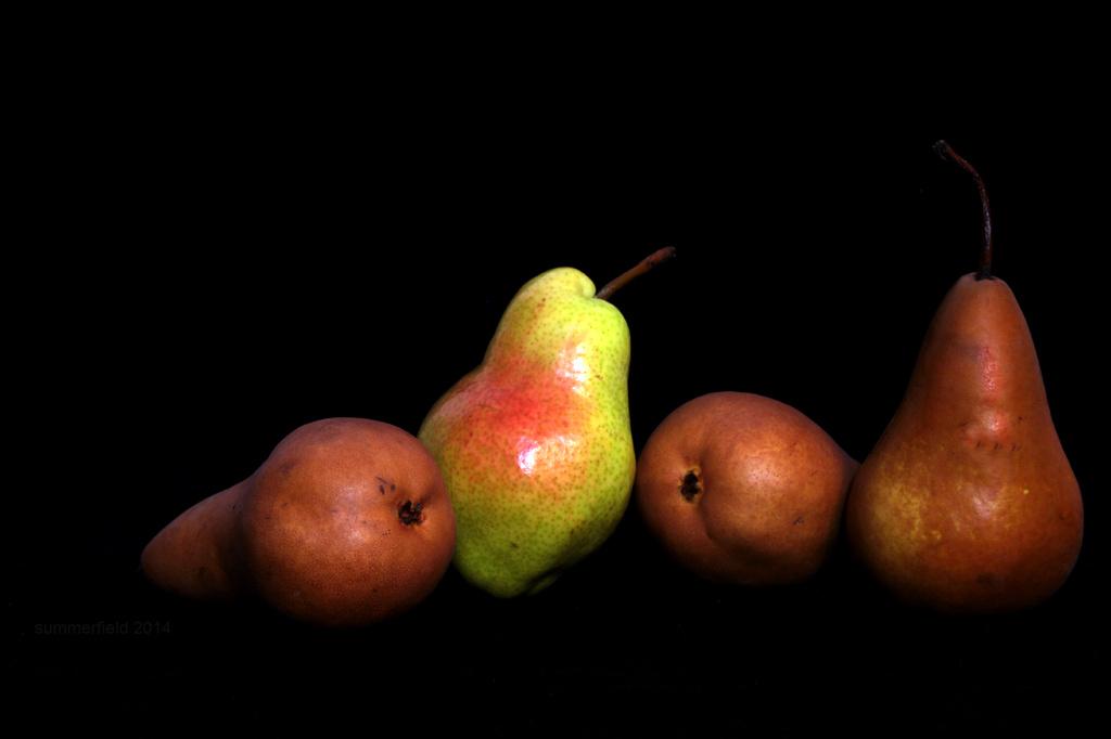 pears encore by summerfield