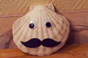 23rd Apr 2014 - Mustache on shells