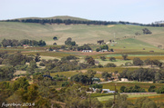 24th Apr 2014 - Miniature Barossa Valley
