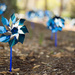 Pinwheels for prevention by riverlandphotos