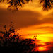 Water color sunset by danette