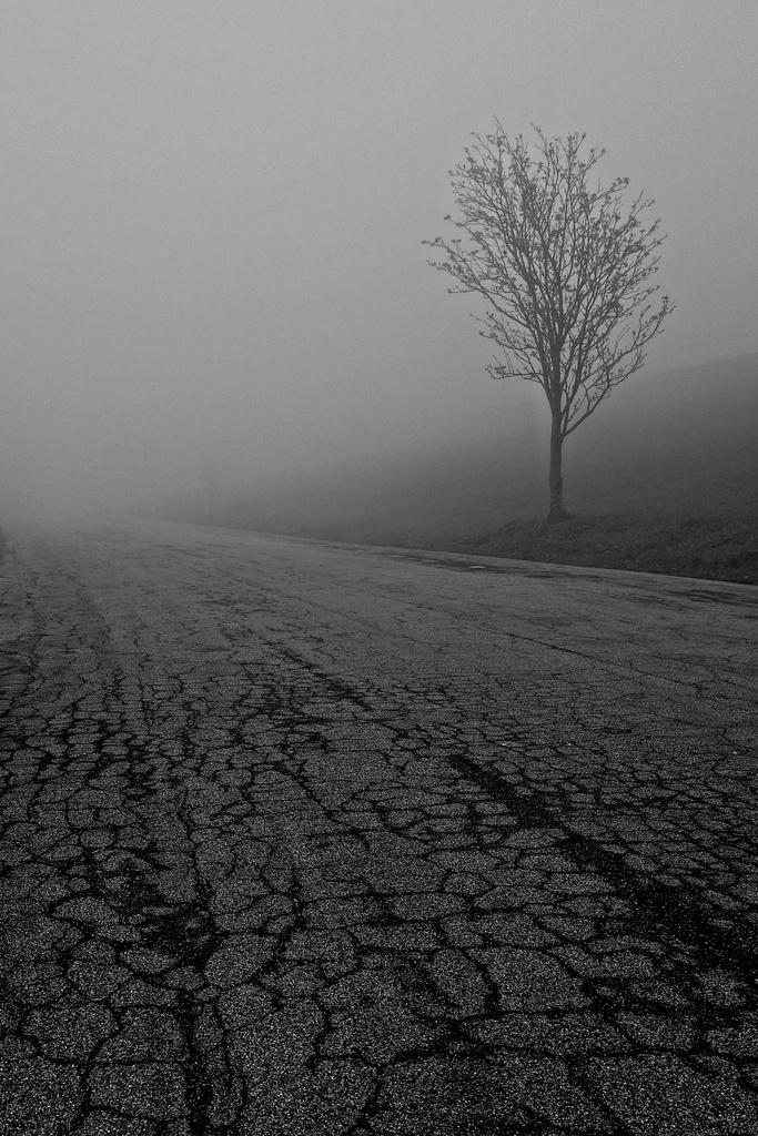 Desolation... by cocobella