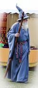5th May 2014 - Gandalf just cruising the fair