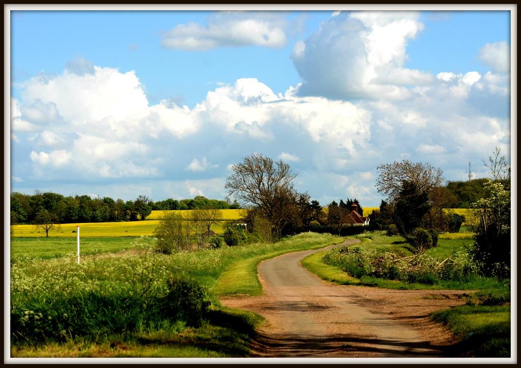 A walk along Wood Lane by rosiekind
