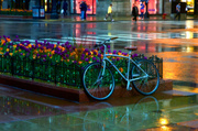 10th May 2014 - The Waiting Bicycle