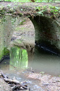 11th May 2014 - Brick Arch, Gobions Wood, Herts