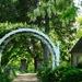 A Fragrant Garden  by khawbecker