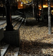 5th Oct 2010 - Fall night in the city