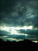 13th May 2014 - Rays