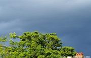 17th Jun 2014 - A Summer's storm