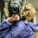 Selfie Scarf.... by shepherdmanswife