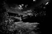 21st May 2014 - Moonlight Shadow...