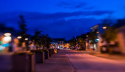 22nd May 2014 - Blue Hour Blur...