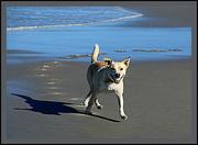 24th May 2014 - At the beach