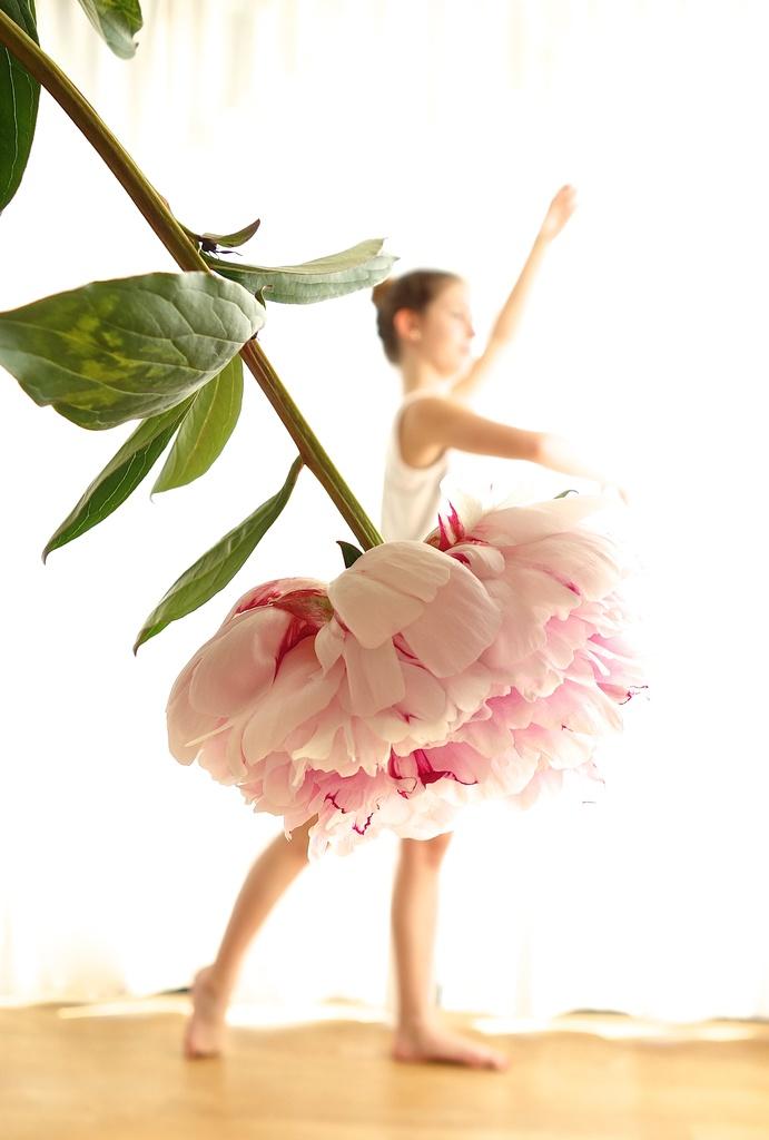 Pretty ballerina by cocobella