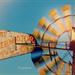Windmill in Motion by lyndemc