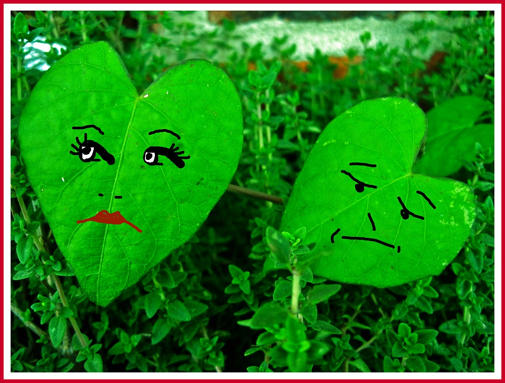 Love Me or Leaf Me by allie912