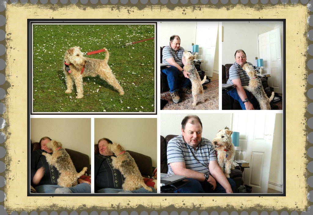 What's it all about Alfie ! by beryl