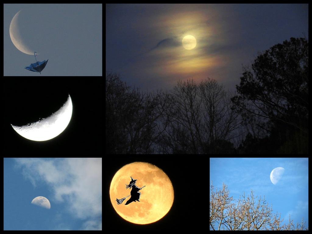 Moonworks by grammyn