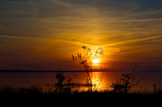 30th May 2014 - Beaver Island Welcomes Us