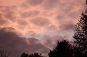 25th Sep 2010 - Sunset