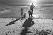 31st May 2014 - Shadow family