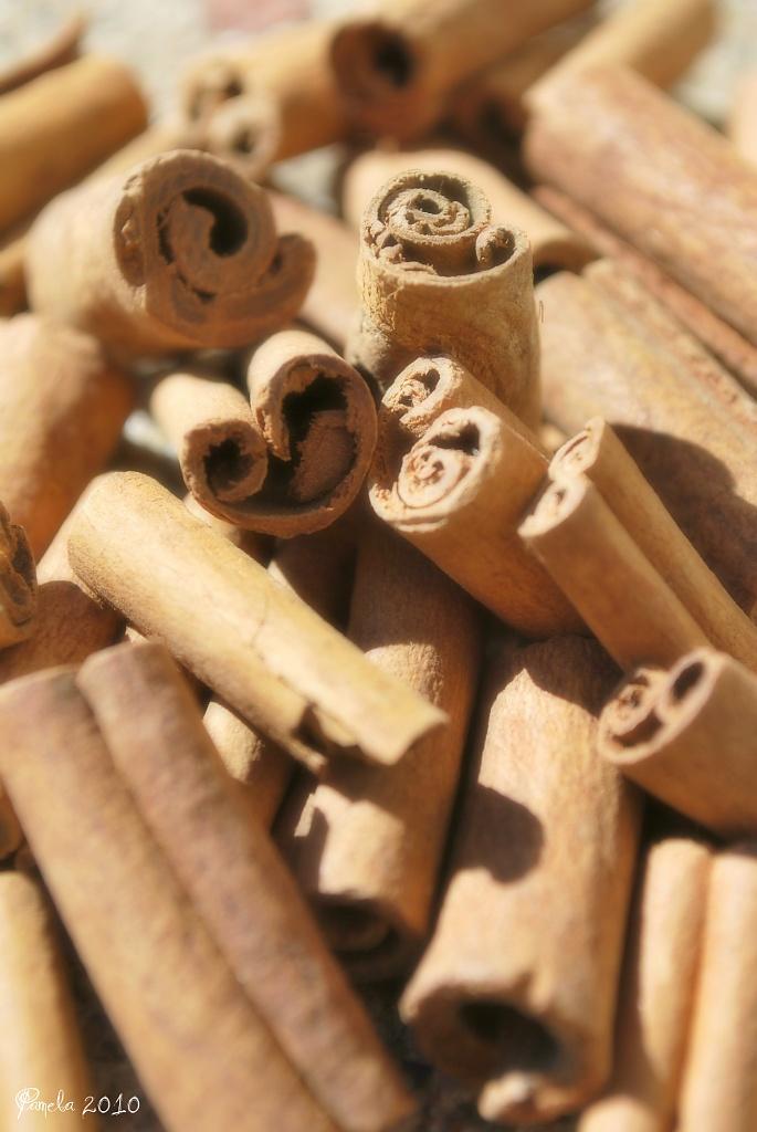 cinnamon sticks... by earthbeone