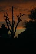 29th May 2014 - Sunset 4