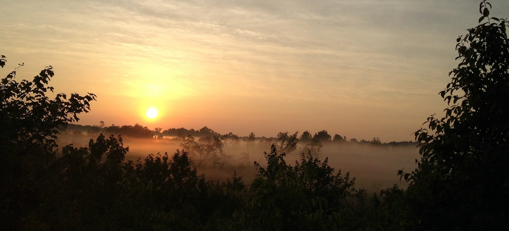 Fog Rising Up To Meet The Sunshine by moonshadow