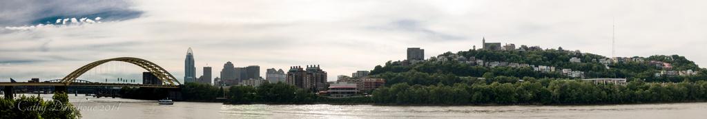 Cincinnati Panorama by cdonohoue