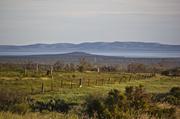 9th Jun 2014 - Flinders Ranges
