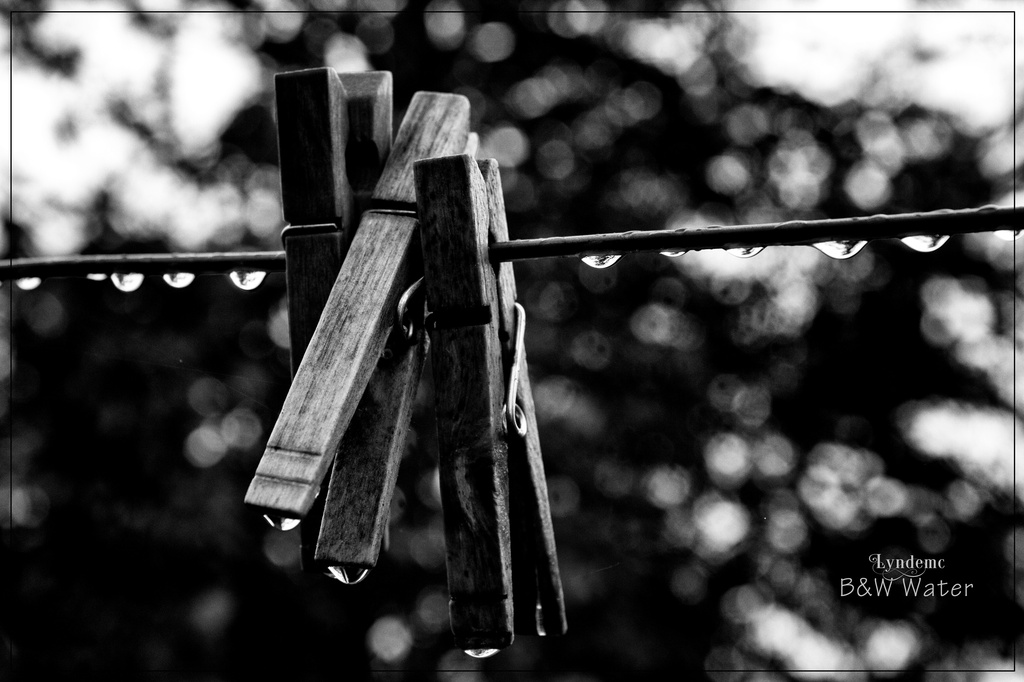 Clothesline in the Rain by lyndemc