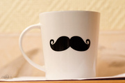 11th Jun 2014 - Mug with a mustache