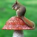 Upon a mushroom! by fayefaye