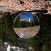 My World in a Globe by lyndemc