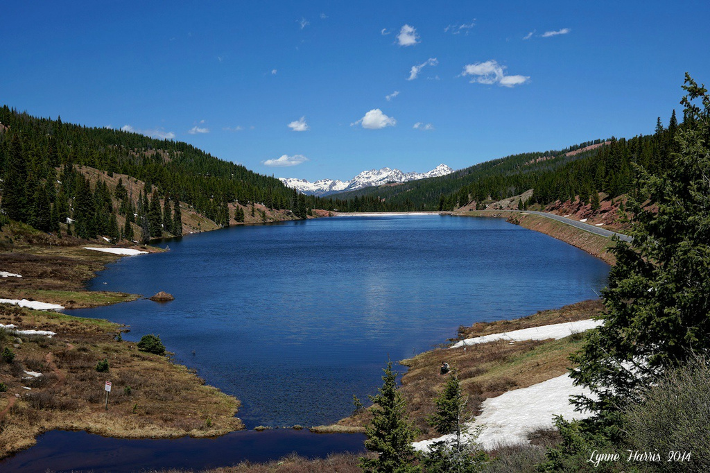 Welcome to Colorado! by lynne5477