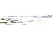 14th Jun 2014 - High Key Boat Pool