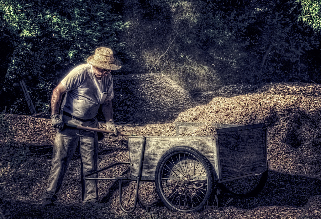 Man At Work by mikegifford