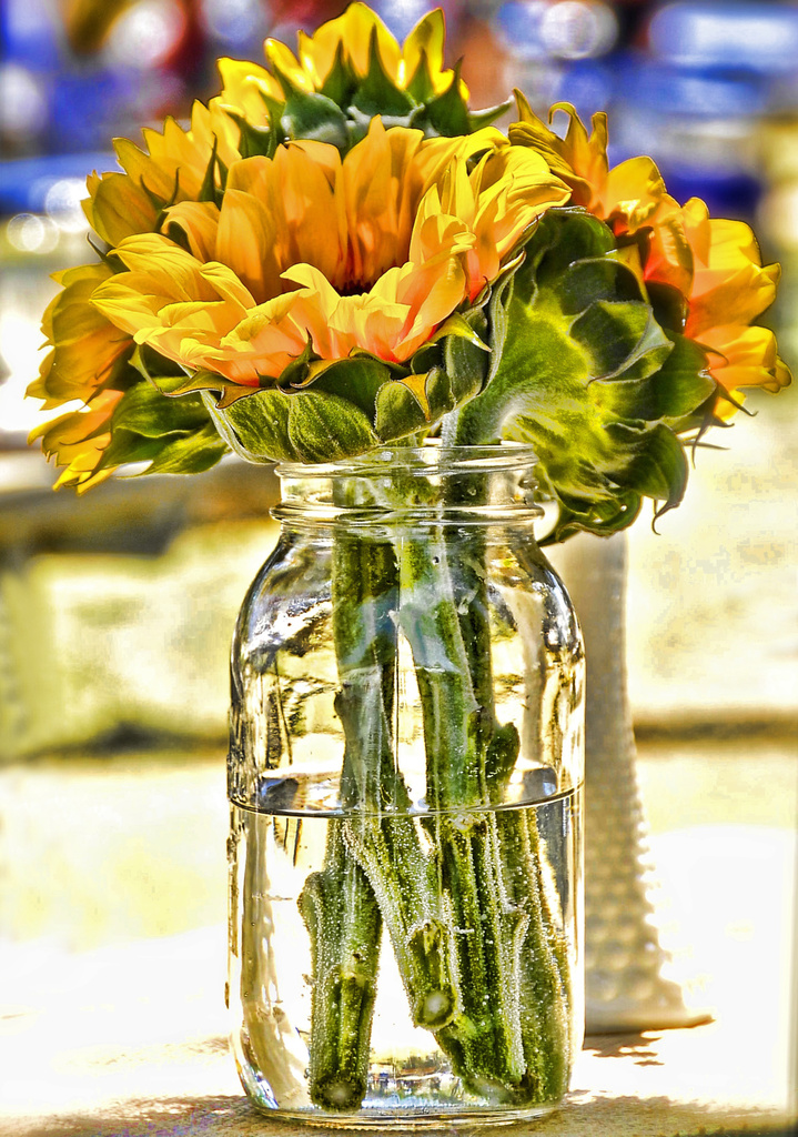 Sunflowers In A Mason Jar  by joysfocus