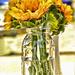 Sunflowers In A Mason Jar  by joysfocus
