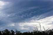 3rd Jun 2014 - Blue skies