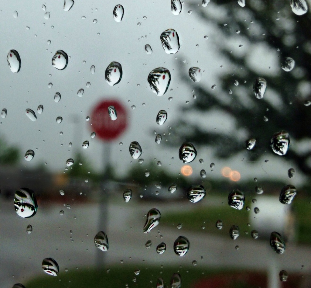 Stop Raining!! by cailts