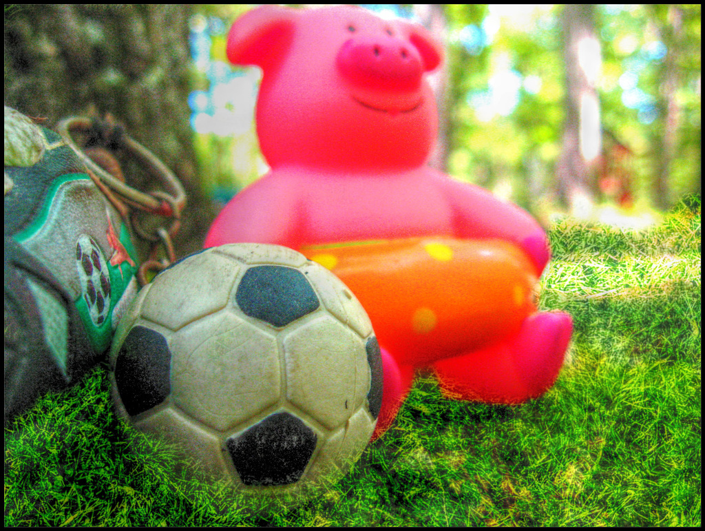 Piggy Celebrates the World Cup by olivetreeann