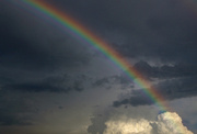 16th Jun 2014 - Rain w/Benefits