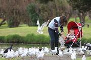 17th Jun 2014 - Feed the birds...