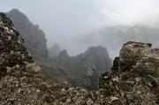 19th Jun 2014 - Rocky Mountain