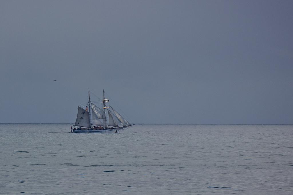 Sailing  by sugarmuser