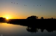 20th Jun 2014 - Early morn on Yellow Waters
