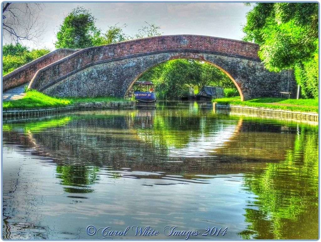 Bridge At Foxton Locks by carolmw