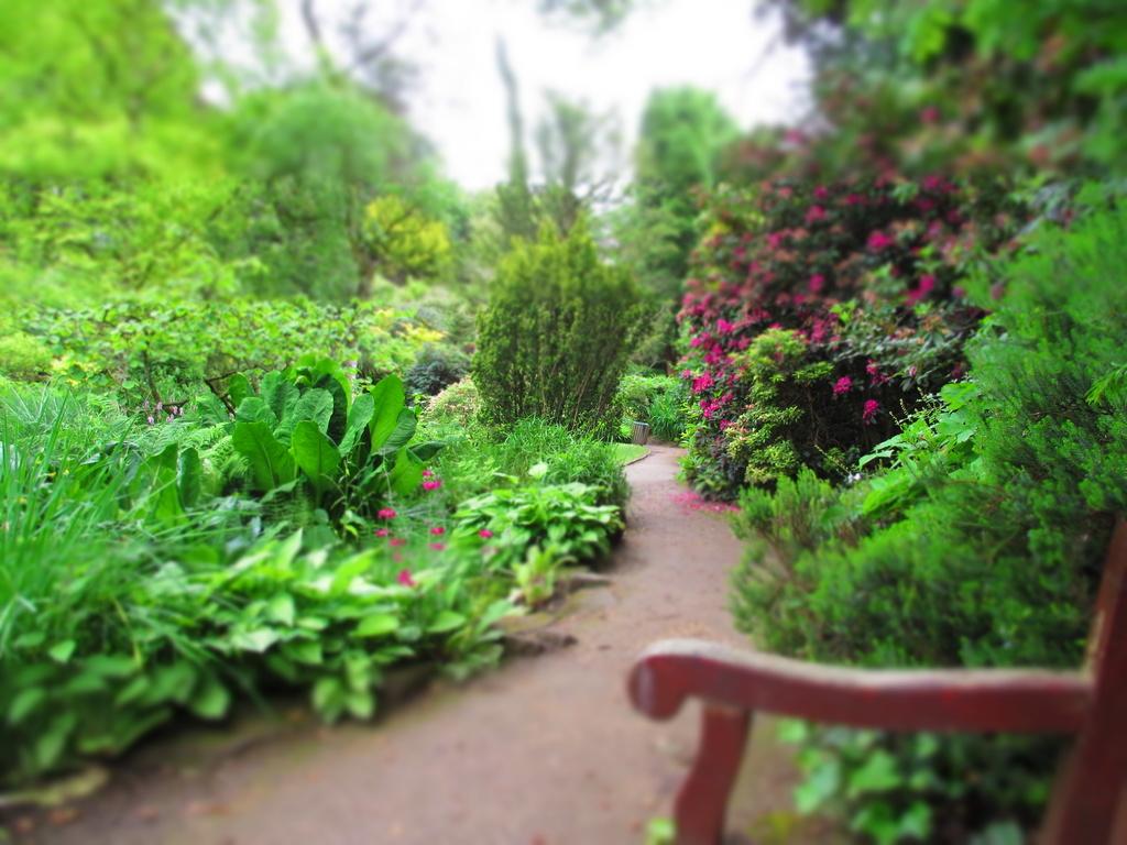 Fletcher Moss Gardens by sarahhorsfall